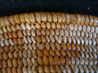 Native American Indian antique basket, a very fine Cupeno Indian basket from California, c. 1920. Closeup photo of the tight weave of the Cupeno Indian basket.